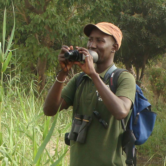 Bird guide Gambia Hassan